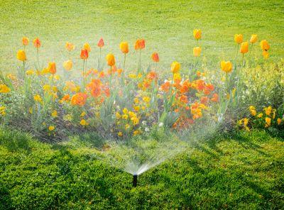 Affordable Lawn Sprinkler Repair Services In North Carolina